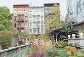 NY, I Love U